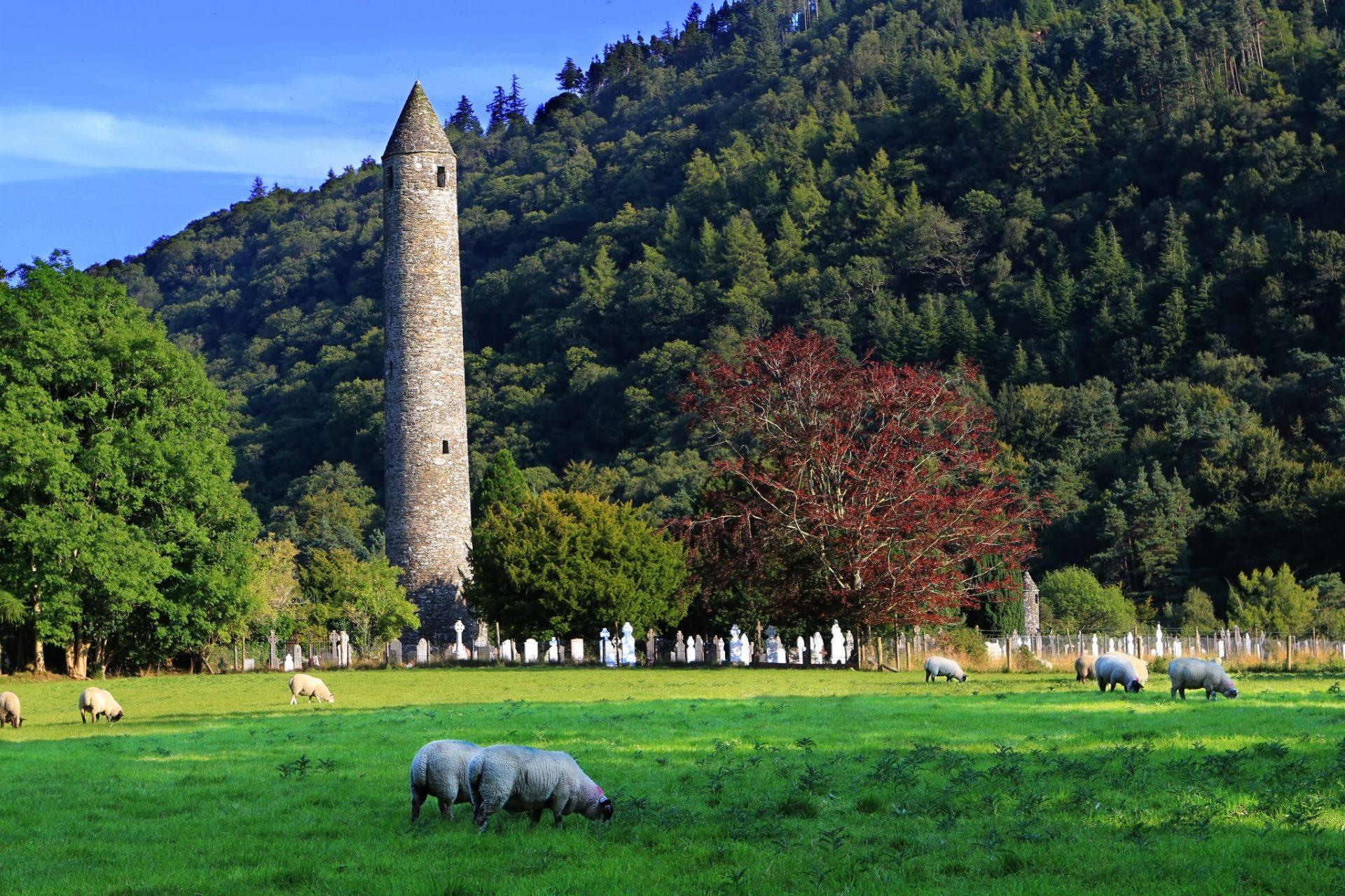Busreis Ireland